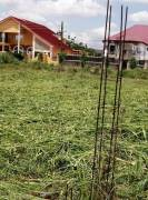 2 plots of Land for sale at Adjigano