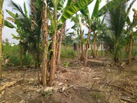 Land for sale at koforidua DVLA round about
